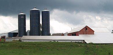 Hahn Farm