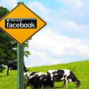 farmers using social media