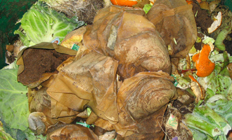 Anaerobic digesters use organic material to create biogas