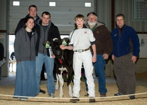 Holstein sale photo