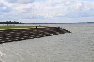 algae.lake