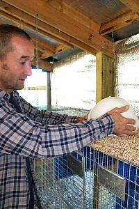 Rousenberg Rabbit Farm4