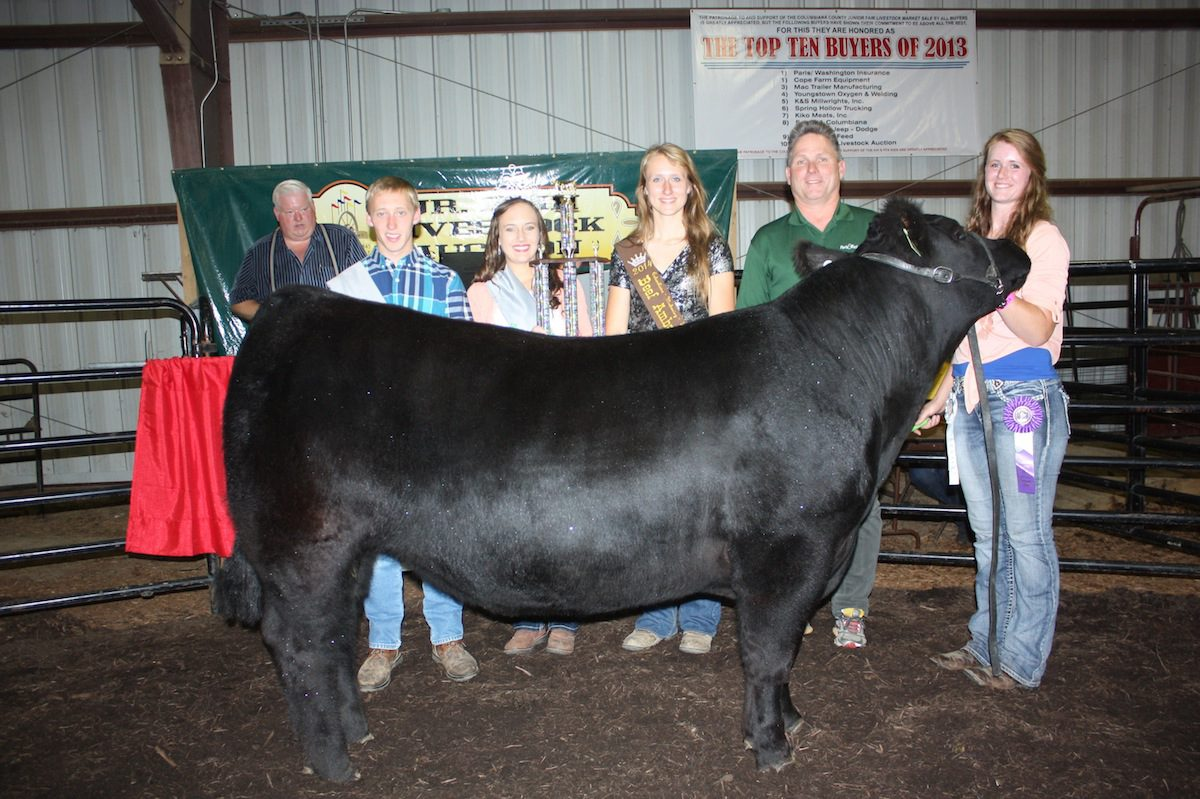 Ohio columbiana county rogers - Haley Drake Was The Senior Steer Skillathon Winner And Showed The Champion Columbiana County Born And Raised Steer