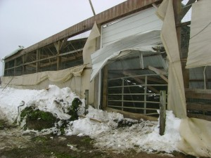 Barn Collapse 8