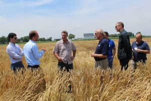 Brad Moffitt, (center right) speaks with foreign wheat traders at OARDC-Wooster.