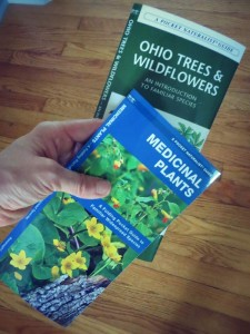 edible plant identification guides