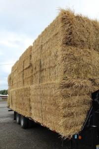 straw load
