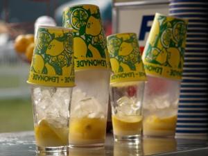 lemon shakes