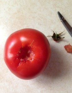 tomato with stem scar removed
