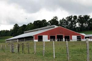 Hartzell9: Meadow Grove Farm