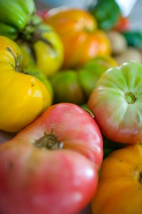 red, green, yellow and orange heirloom tomatoes